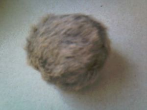 Fur covered balls